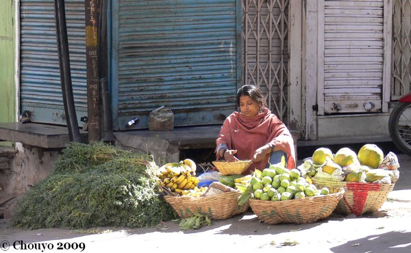 journee-de-la-femme-udaipur-4_0