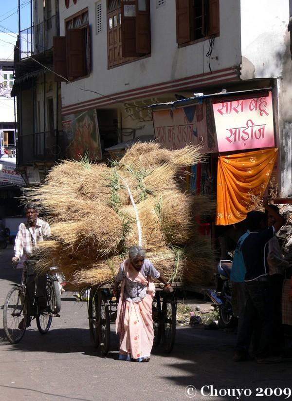 journee-de-la-femme-udaipur-5_0