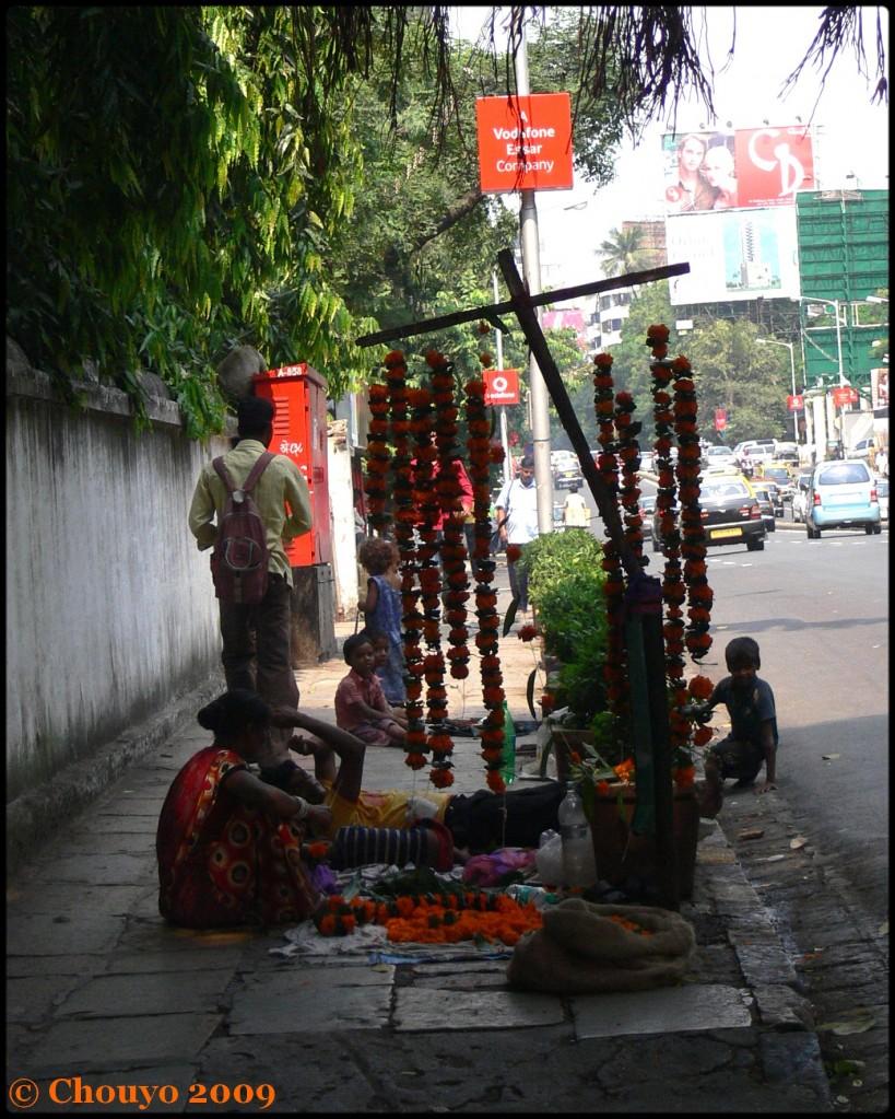 Fleurs Diwali