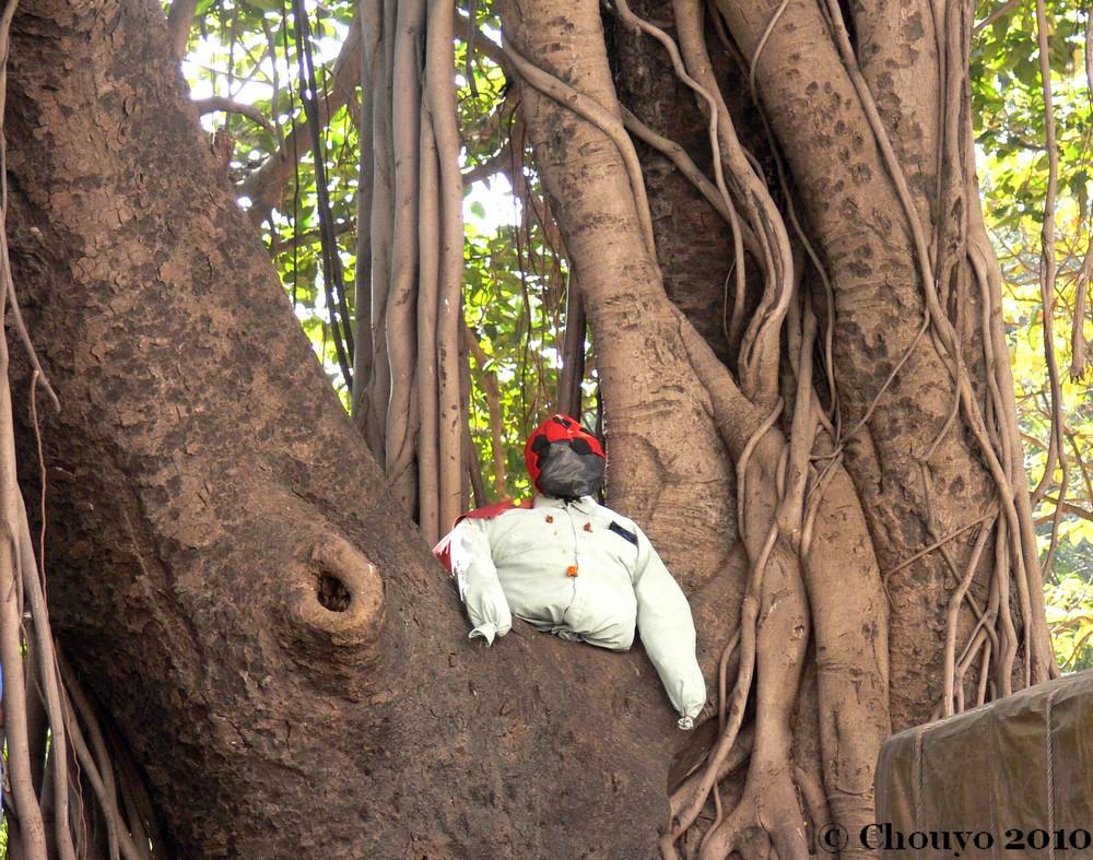 Gardien Horniman Circle Mumbai