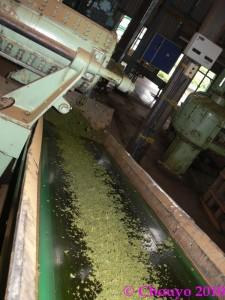 Nilgiri Hills Fabrique de thé 3