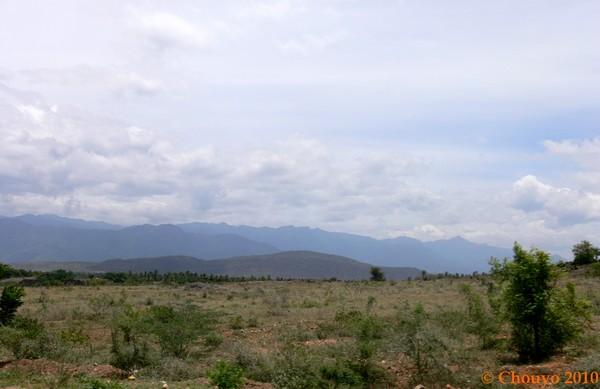 Tamil Nadu Nilgiri Hills