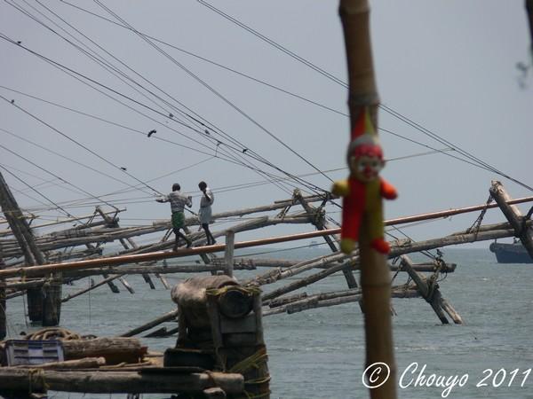 Cochin Filets de pêche chinois