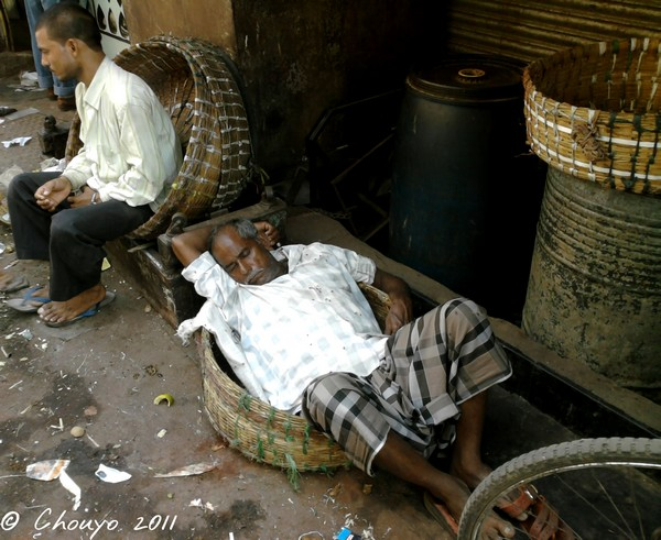 Bombay Dormeur