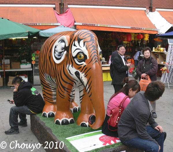 Londres Tigerphant