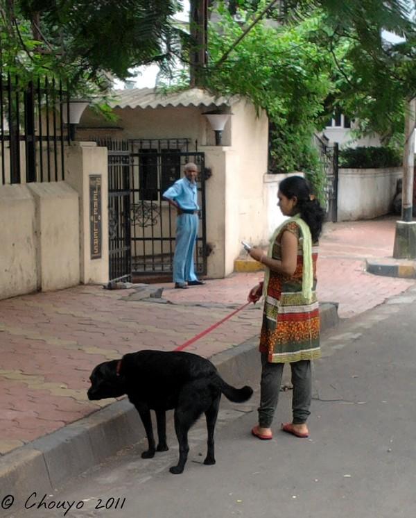 Mumbai Dogsitter 2