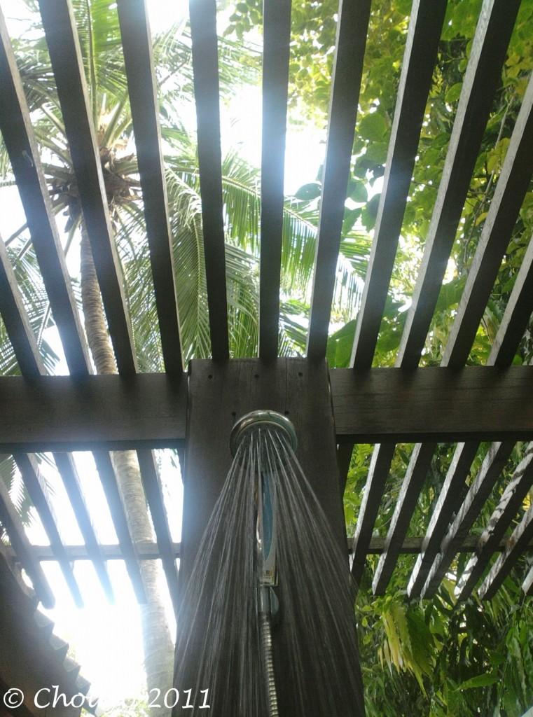 Douche tropicale 3