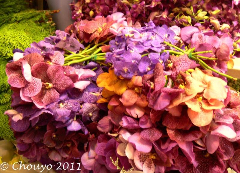 Marché aux Fleurs 10 blog