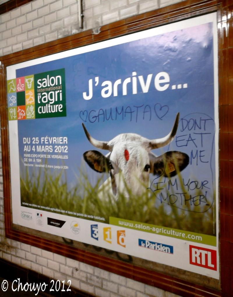 Salon de l'Agriculture Vache