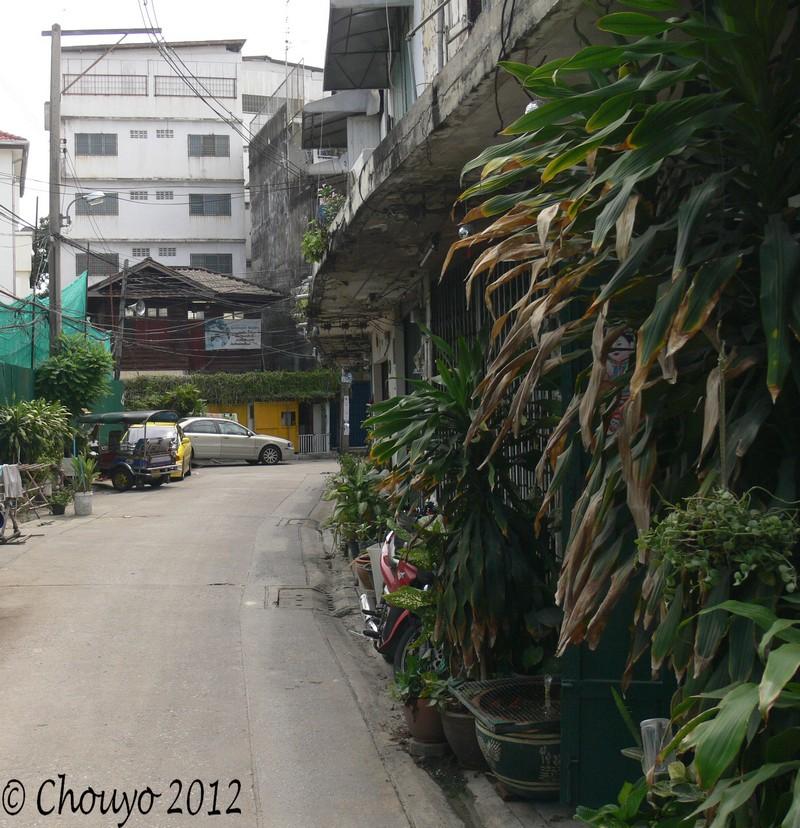 Thaïlande Ville entrelacs 7