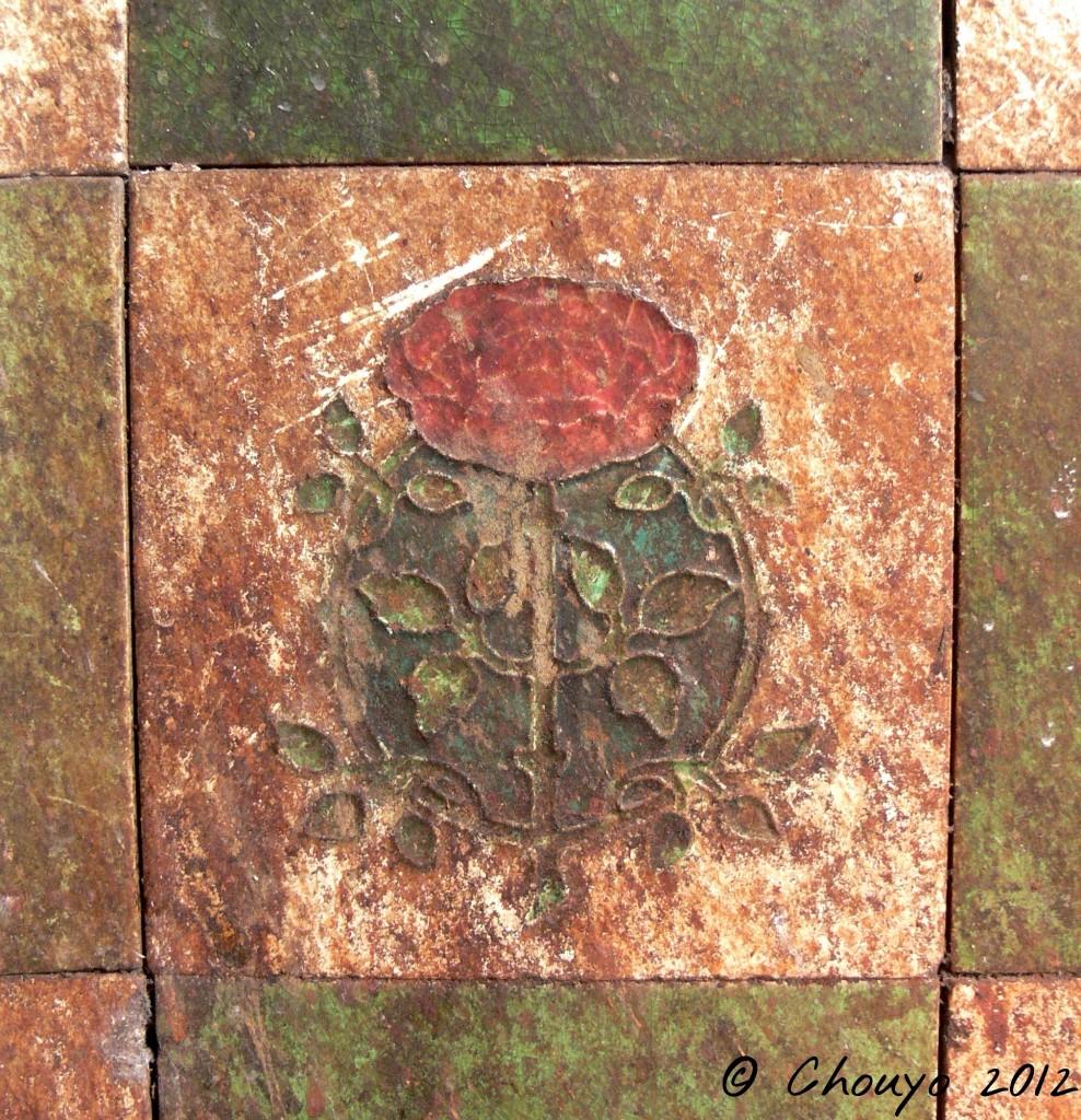 Calcutta Rose