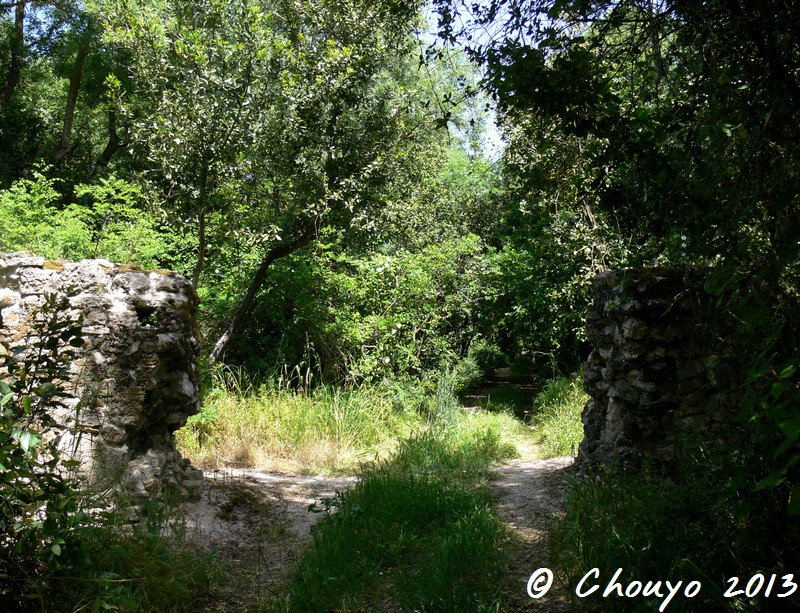Albanie Butrint Chemin