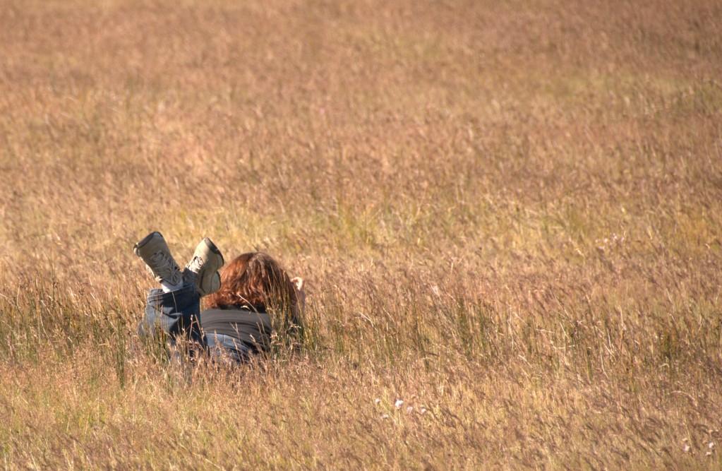 Chouyo in the Field