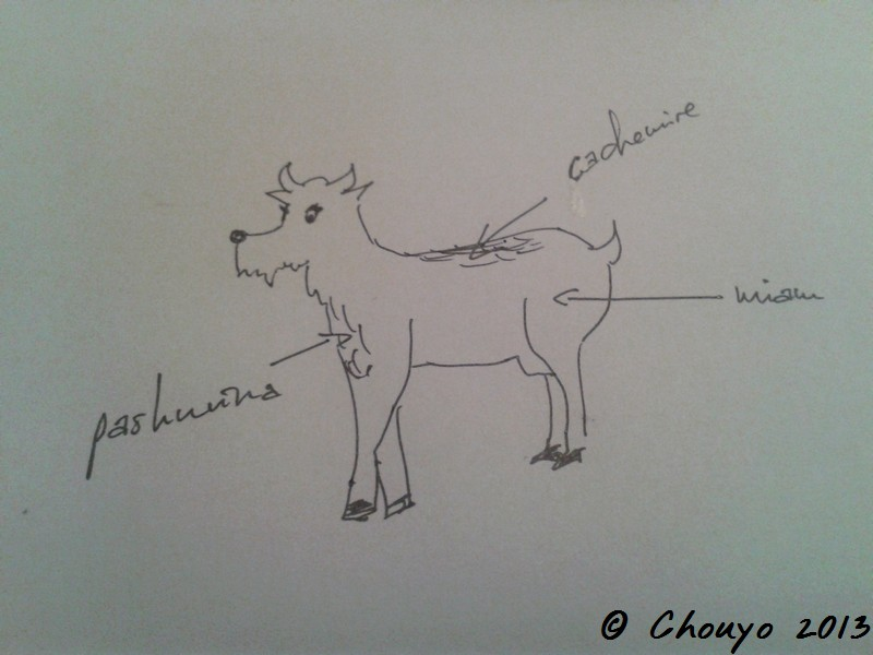 Chèvre à pashmina