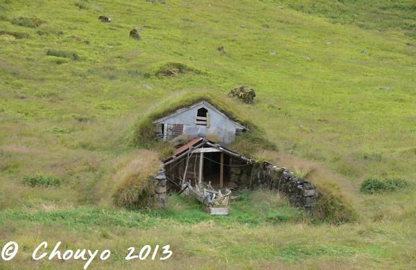 Islande Maison herbue