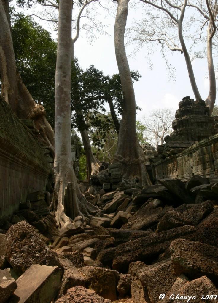 Cambodge Angkor 1