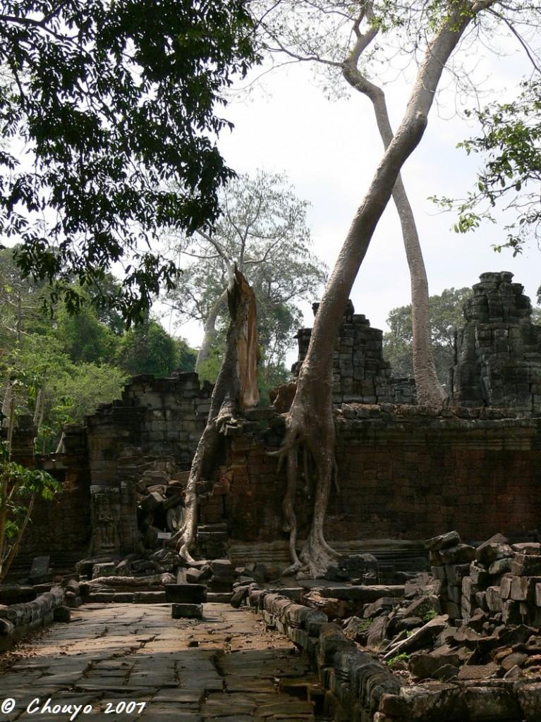 Cambodge Angkor 3