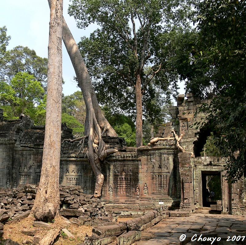 Cambodge Angkor 4