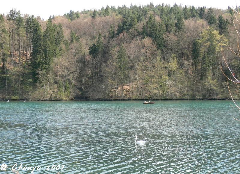 Slovénie Parc
