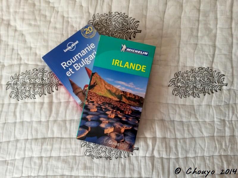 Voyage Guides