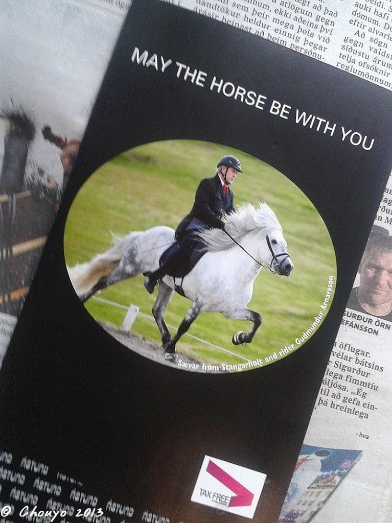 Islande May the Horse be with you