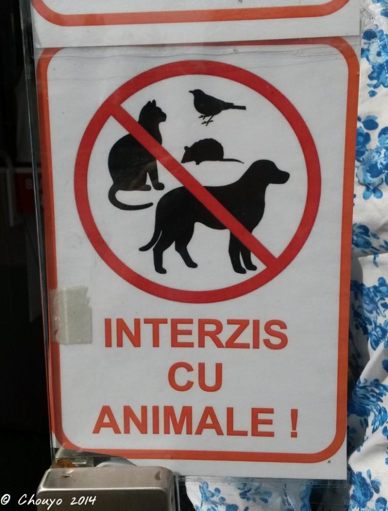 Roumanie Sibiu
