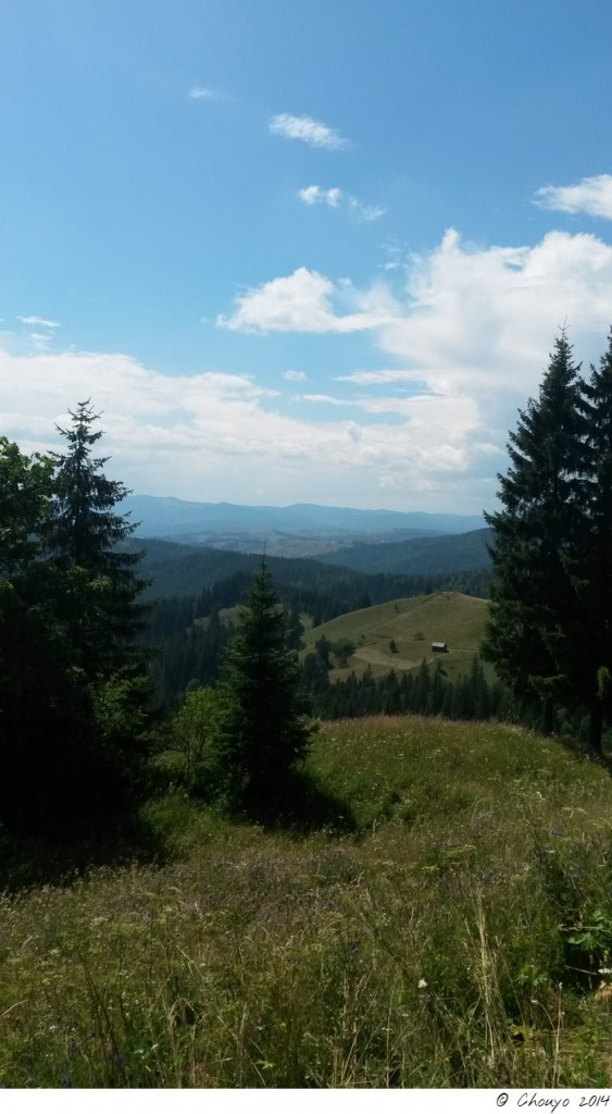 Roumanie Bucovine