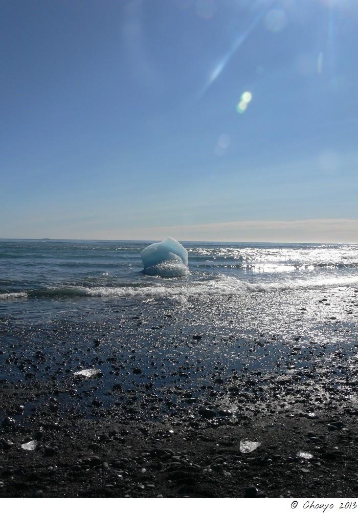 Islande Jökulsarlon 26