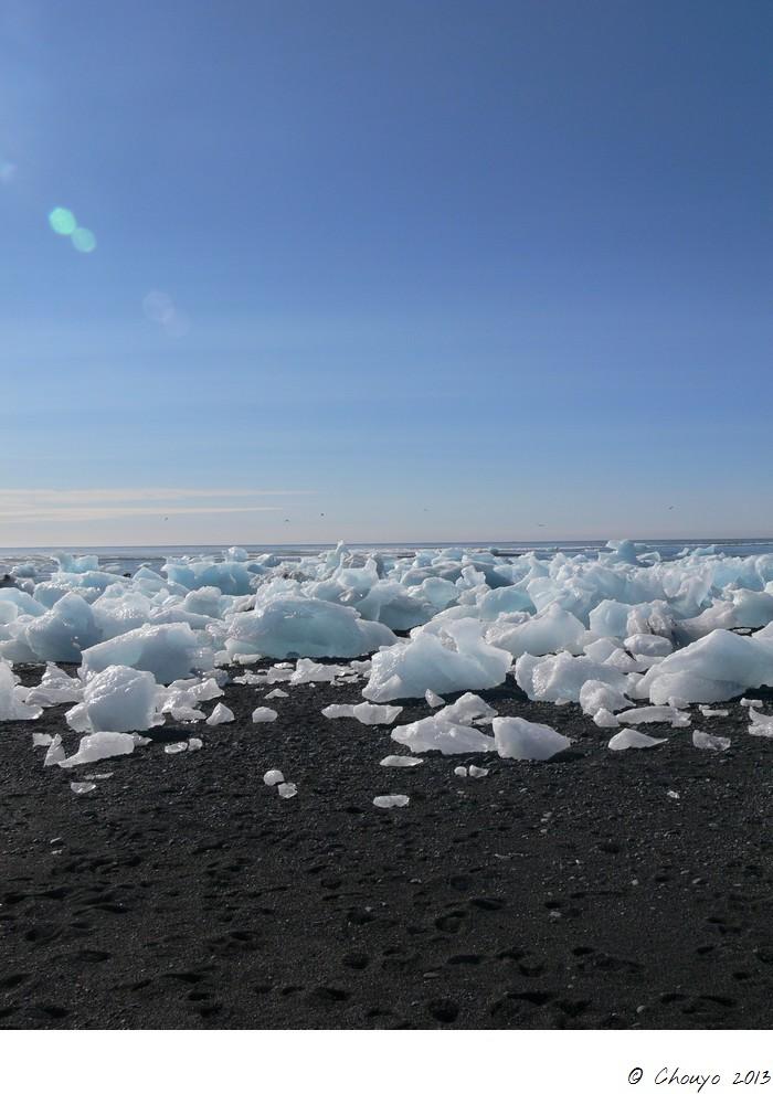 Islande Jökulsarlon 5