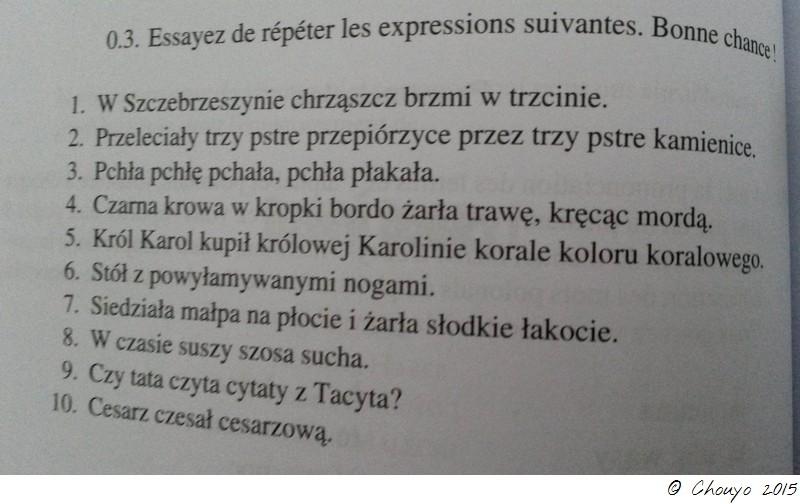 Polonais Phrases