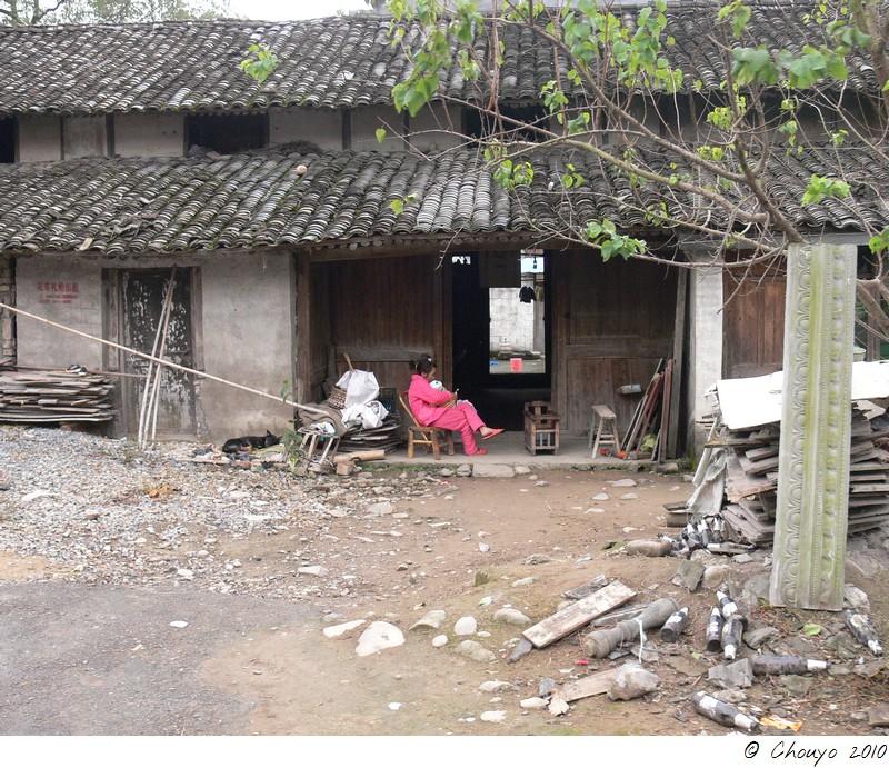 Wenzhou 17