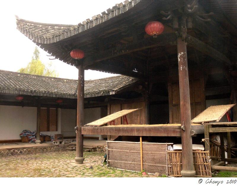 Wenzhou 6