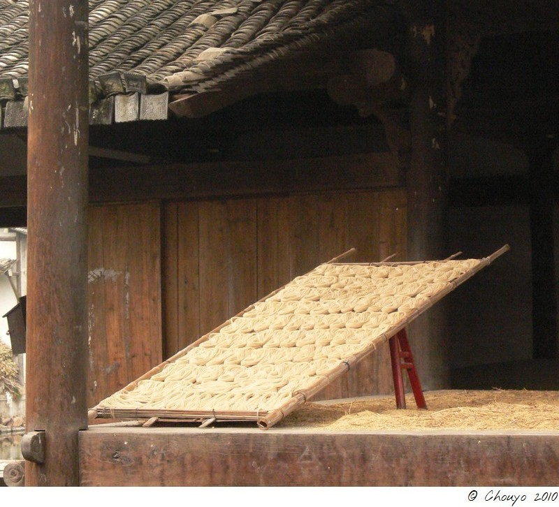Wenzhou 7